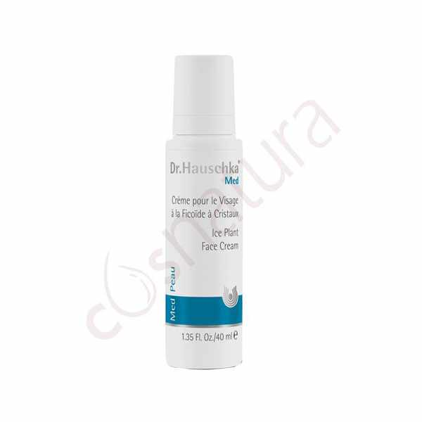 Crema Facial Planta de la Escarcha 40 ml Dr Hauschka